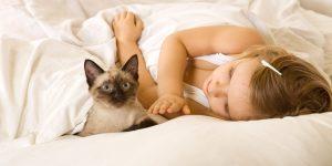 parul animalelor poate influenta sanatatea copilului