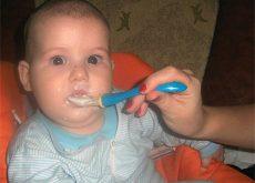 branzica-de-vaci-cu-avocado-si-ou-pentru-bebelusi-dupa-7-luni.jpg