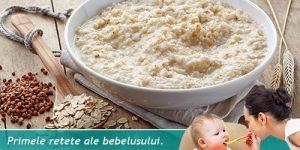budinca-de-ovaz-cu-seminte-de-chia-pentru-bebelusi-de-la-10-12-luni.jpg