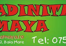 p-gradinita-maya-o-gradinita-minunata-pentru-copii-educati-sanatosi-si-fericiti.jpg