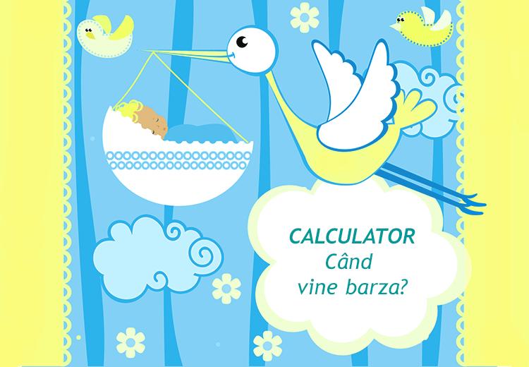 Calculator Sarcina si Nastere